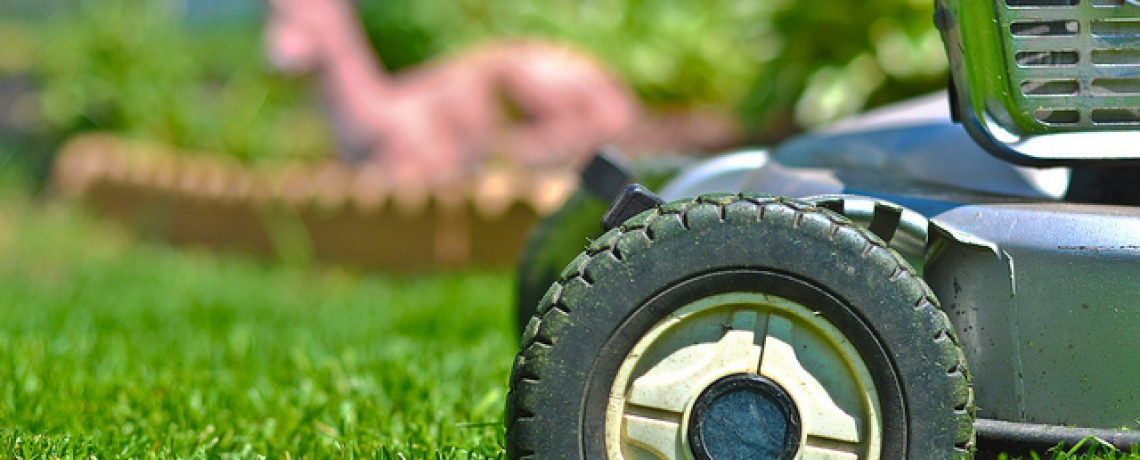7 Lawn Care Tips for your Kamloops Yard
