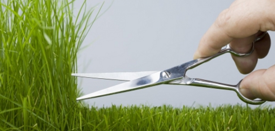 cutting grass shutterstock 41892025